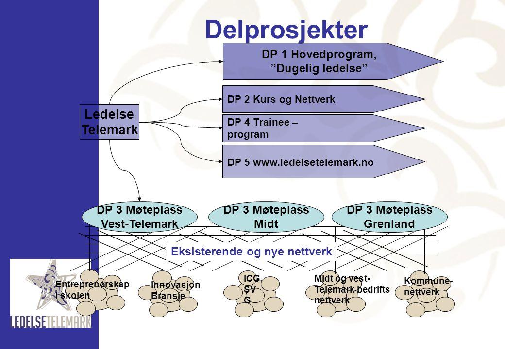 Delprosjekter Ledelse Telemark DP 3 Møteplass Vest-Telemark Midt
