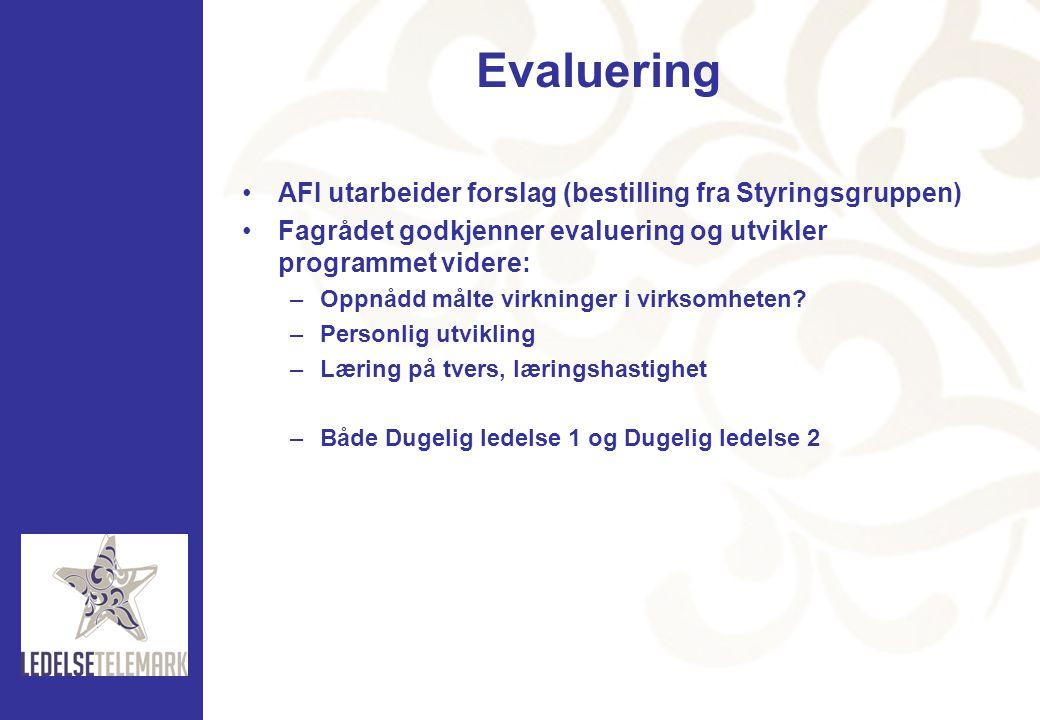 Evaluering AFI utarbeider forslag (bestilling fra Styringsgruppen)
