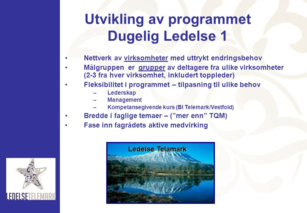 Utvikling av programmet Dugelig Ledelse 1
