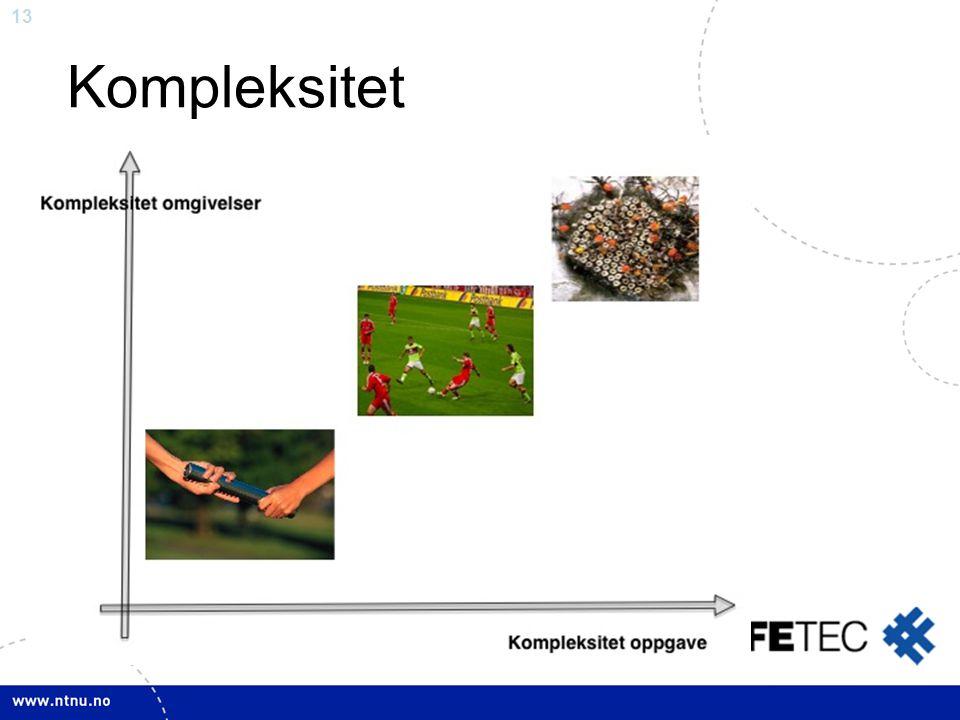 Kompleksitet Kompleksitet: Har å gjøre med både oppgave, og omgivelser