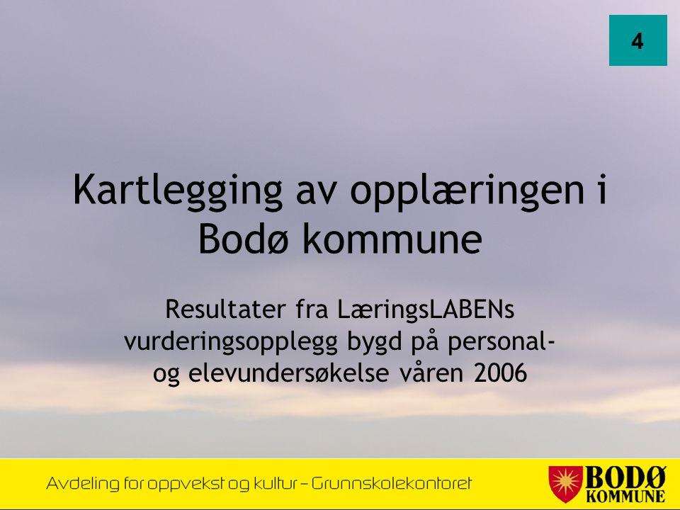 Kartlegging av opplæringen i Bodø kommune