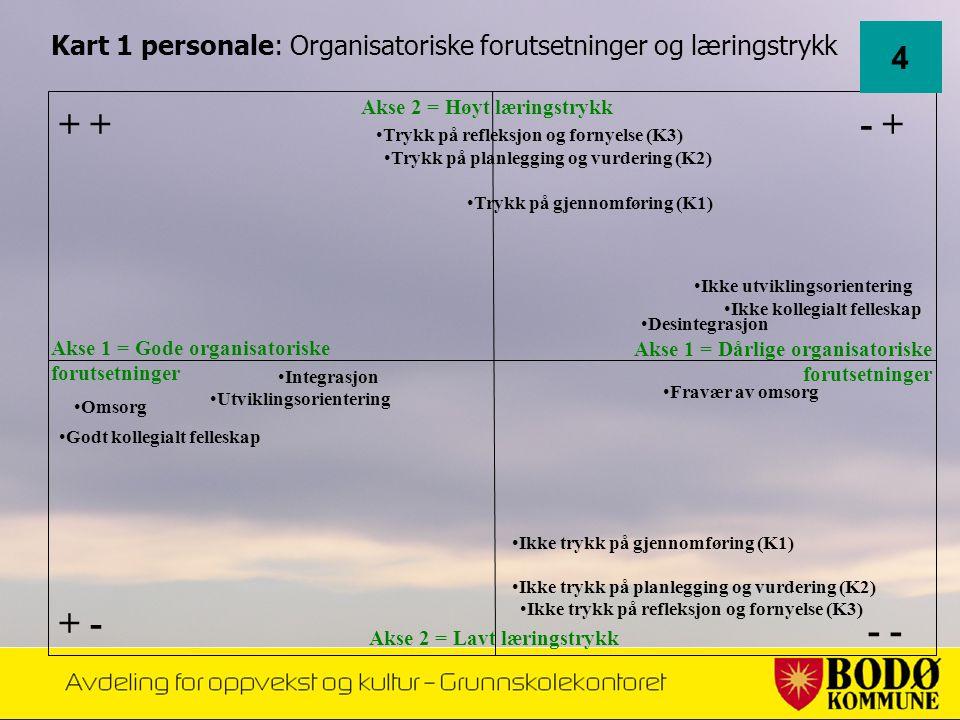Kart 1 personale: Organisatoriske forutsetninger og læringstrykk