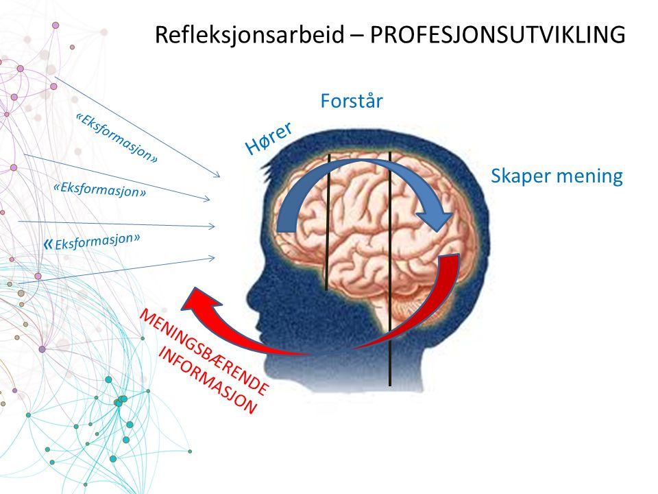 Refleksjonsarbeid – PROFESJONSUTVIKLING