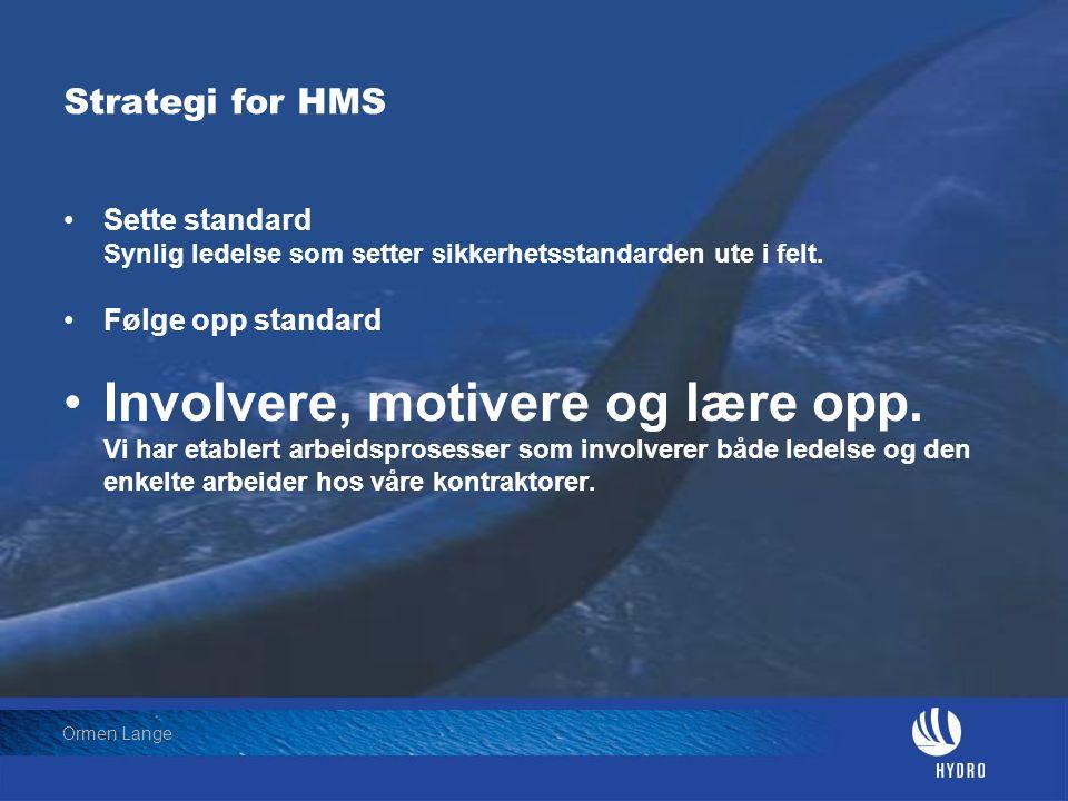 Strategi for HMS Sette standard Synlig ledelse som setter sikkerhetsstandarden ute i felt. Følge opp standard.