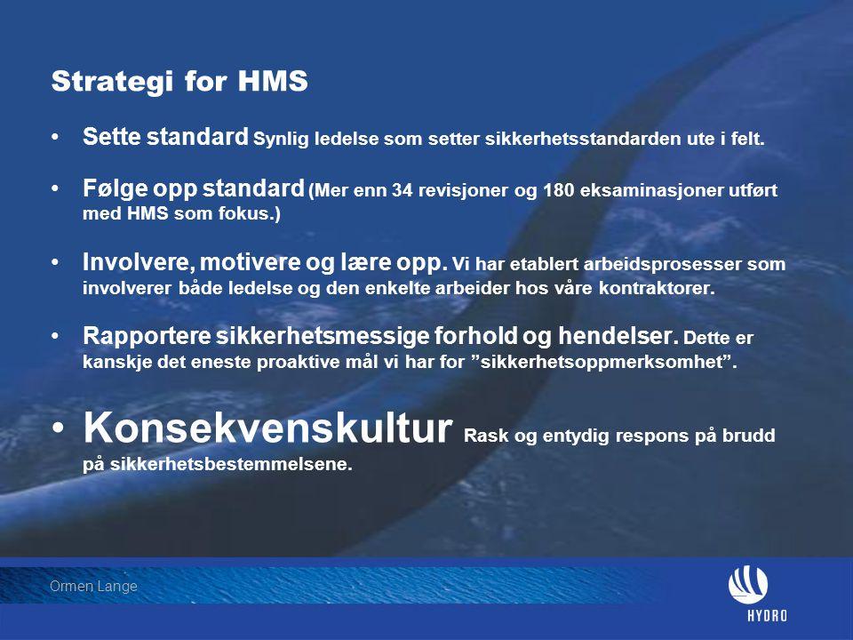 Strategi for HMS Sette standard Synlig ledelse som setter sikkerhetsstandarden ute i felt.