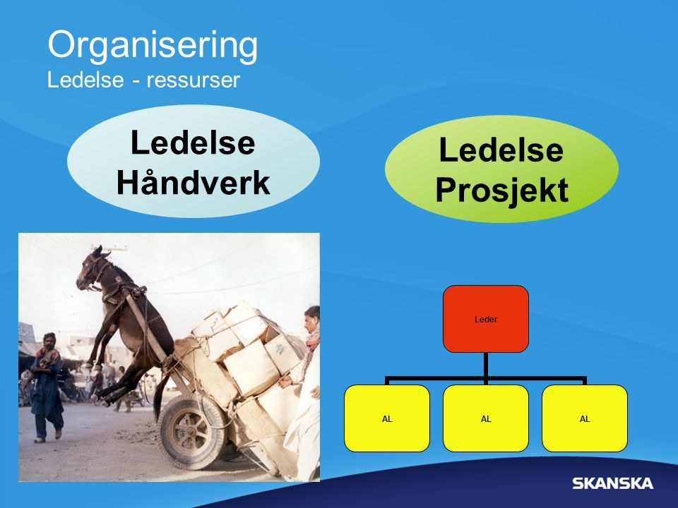 Organisering Ledelse - ressurser