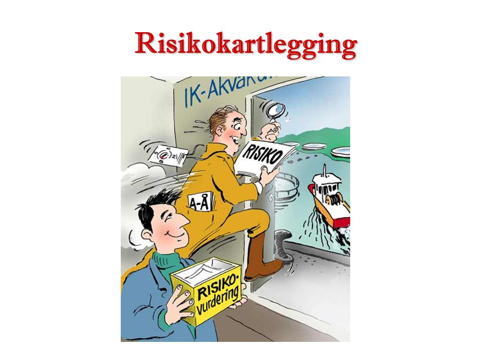 Risikokartlegging