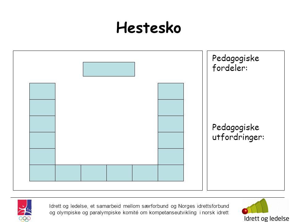 Hestesko Pedagogiske fordeler: Pedagogiske utfordringer: