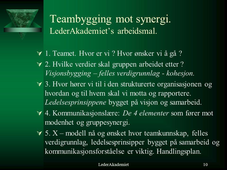 Teambygging mot synergi. LederAkademiet's arbeidsmal.
