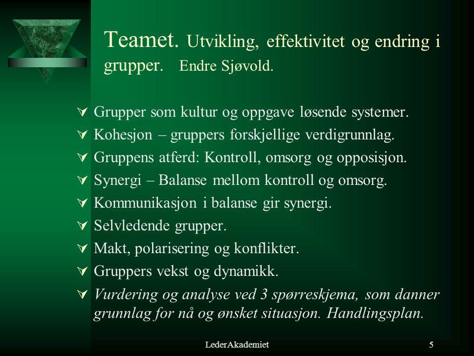 Teamet. Utvikling, effektivitet og endring i grupper. Endre Sjøvold.