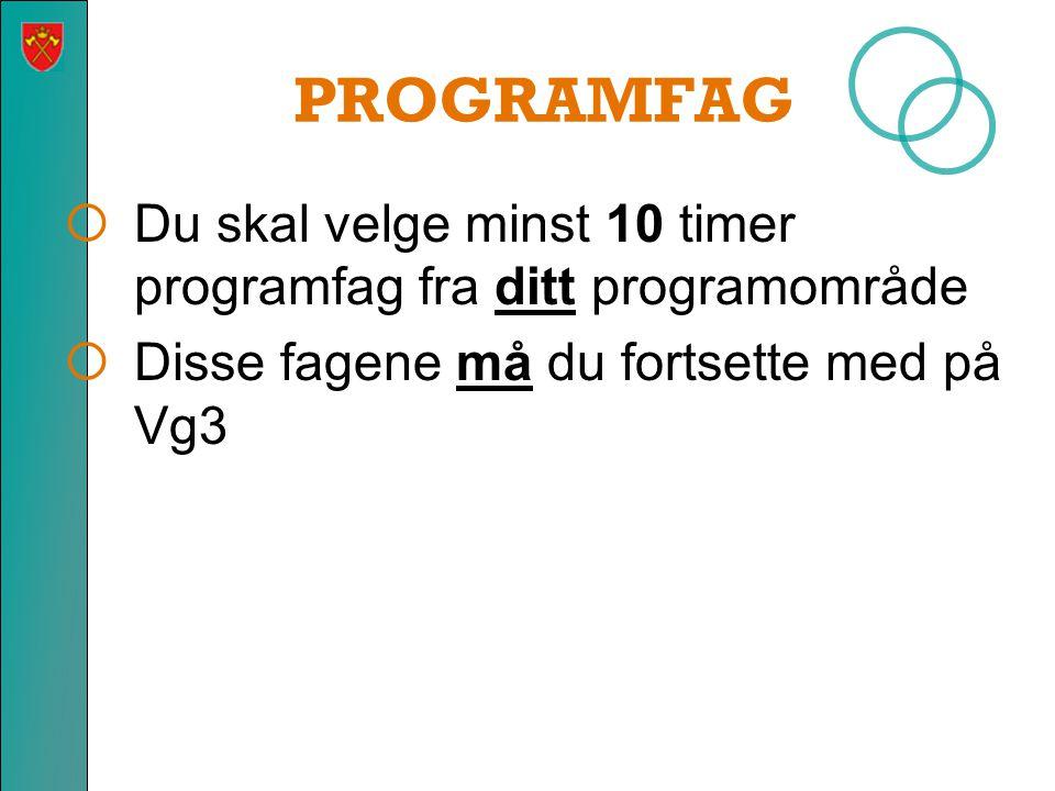 PROGRAMFAG Du skal velge minst 10 timer programfag fra ditt programområde.