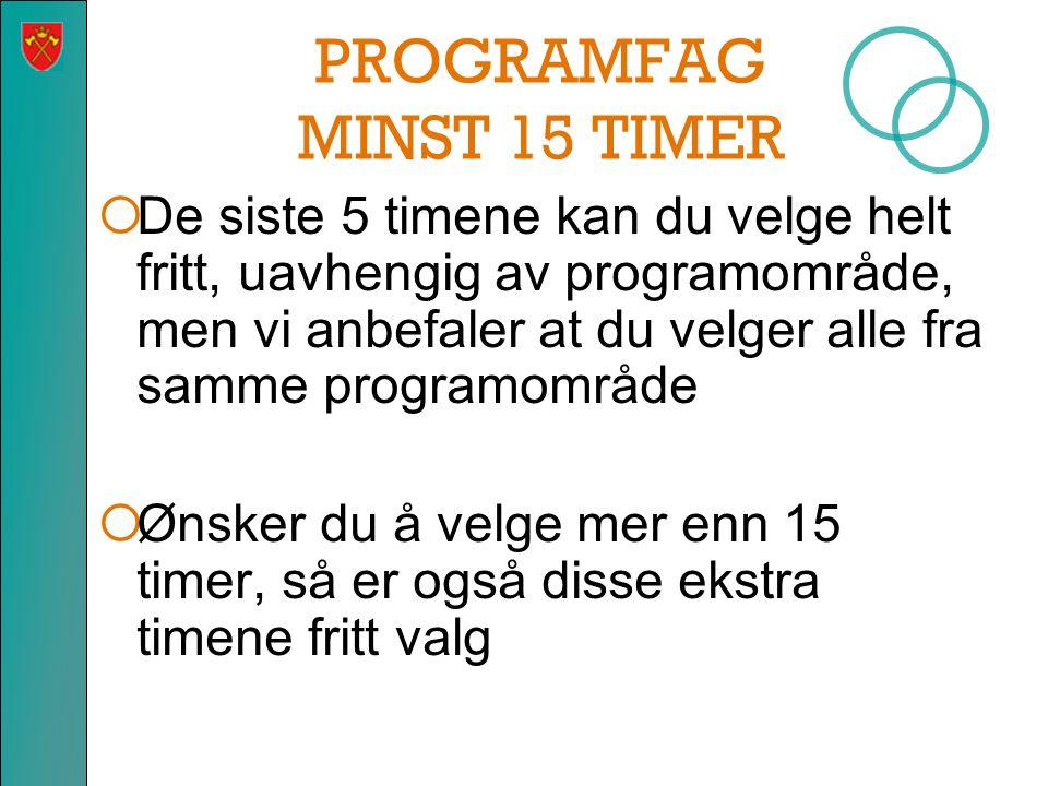 PROGRAMFAG MINST 15 TIMER