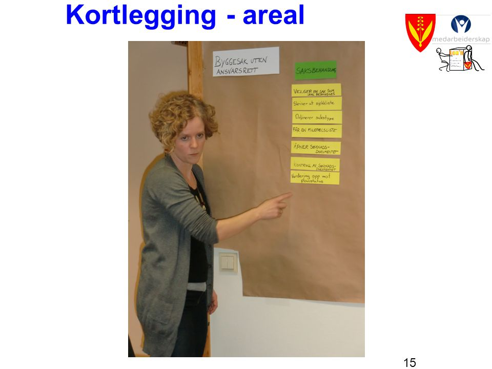 Kortlegging - areal