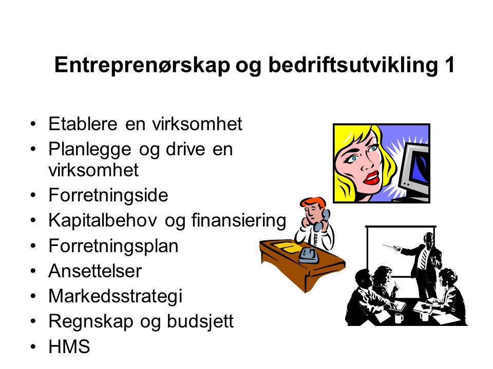 Entreprenørskap og bedriftsutvikling 1