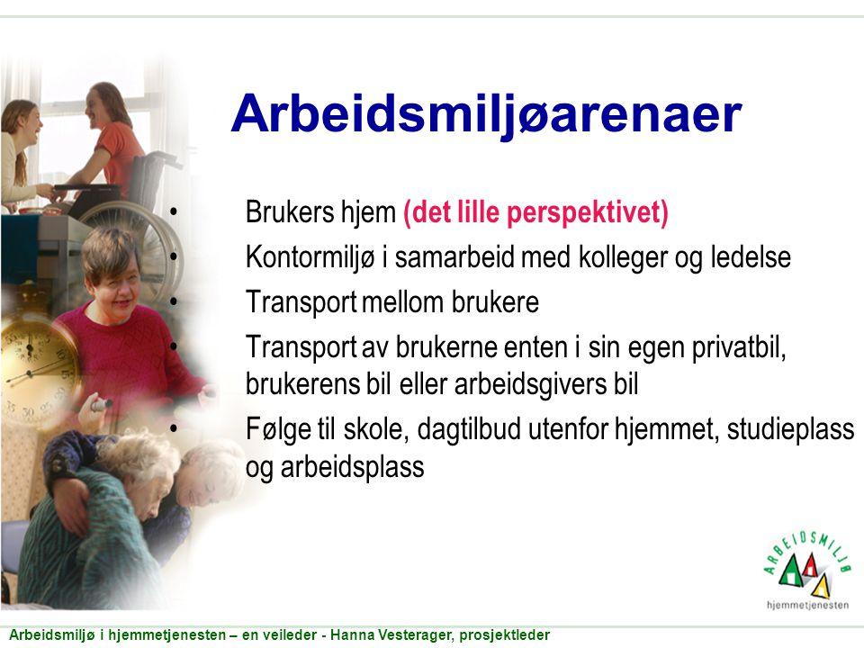 Arbeidsmiljøarenaer Brukers hjem (det lille perspektivet)