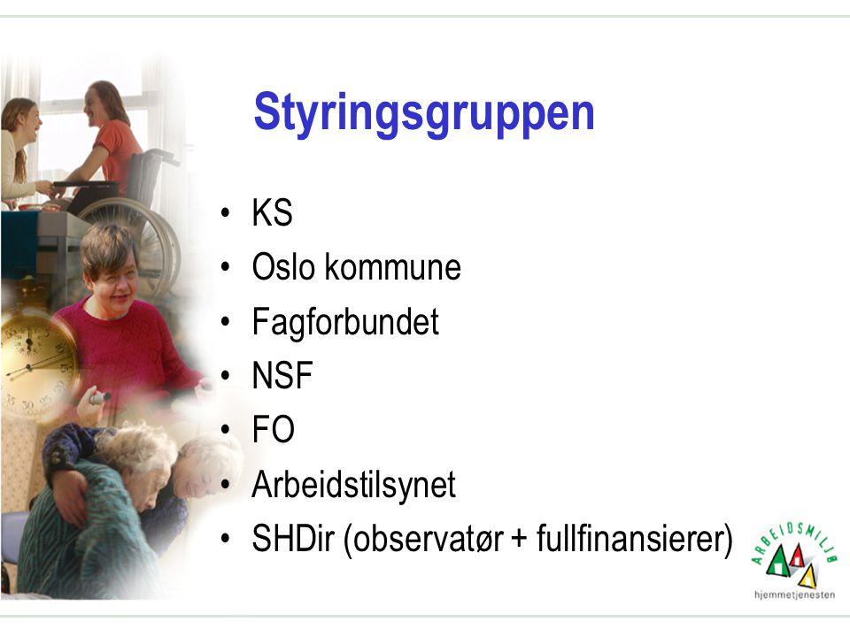 Styringsgruppen KS Oslo kommune Fagforbundet NSF FO Arbeidstilsynet