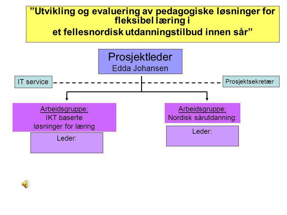 Prosjektleder Edda Johansen
