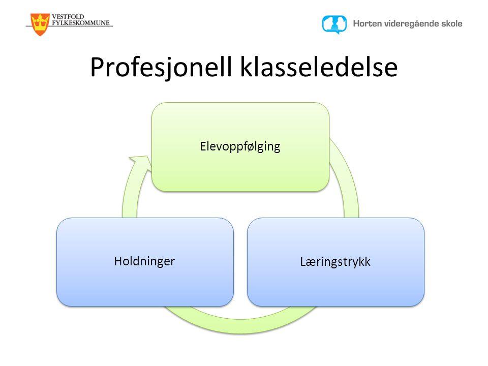 Profesjonell klasseledelse
