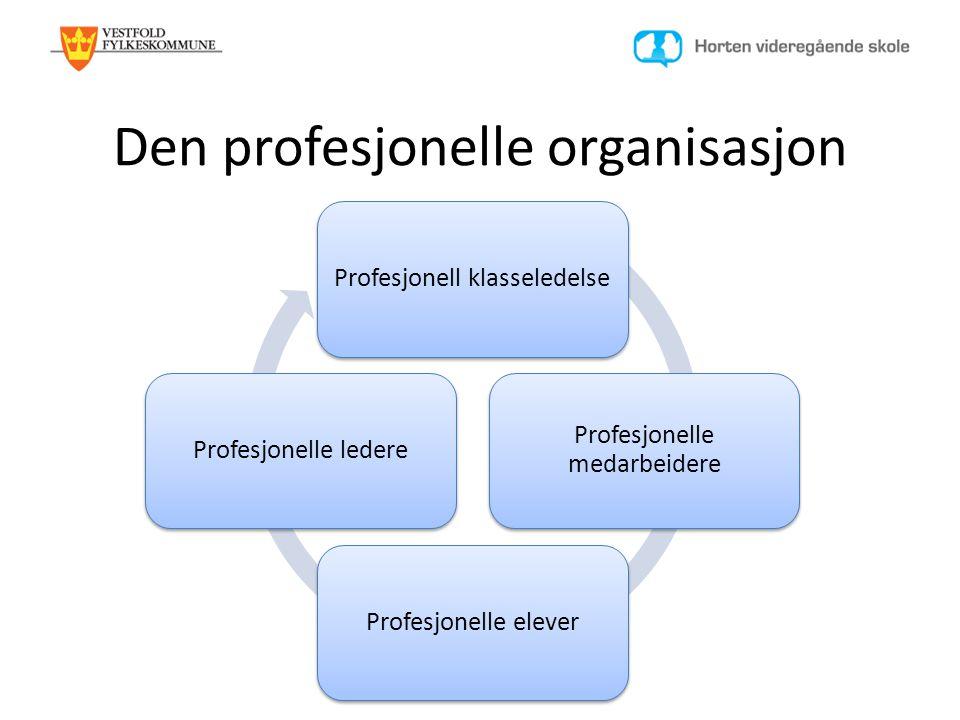 Den profesjonelle organisasjon