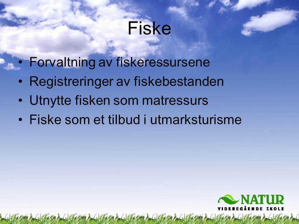 Fiske Forvaltning av fiskeressursene Registreringer av fiskebestanden