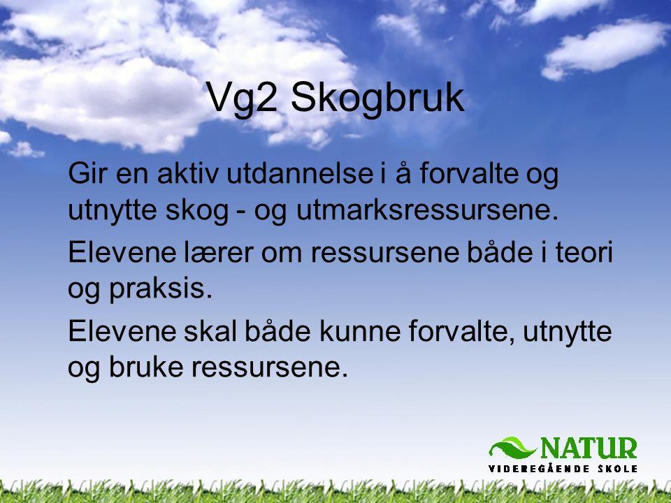 Vg2 Skogbruk Gir en aktiv utdannelse i å forvalte og utnytte skog - og utmarksressursene. Elevene lærer om ressursene både i teori og praksis.