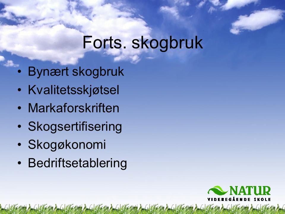 Forts. skogbruk Bynært skogbruk Kvalitetsskjøtsel Markaforskriften