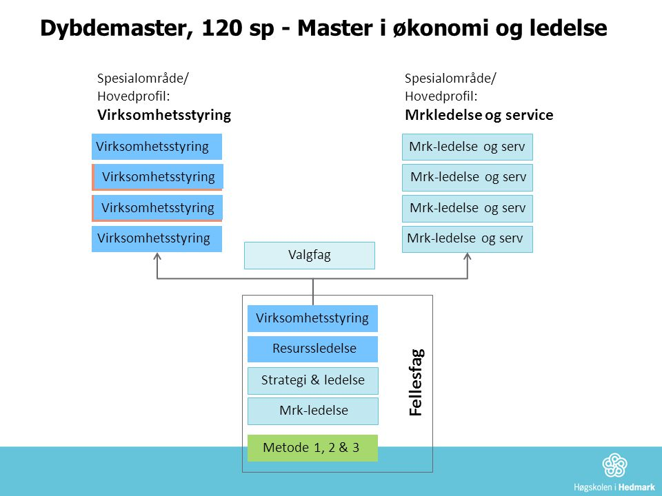 Dybdemaster, 120 sp - Master i økonomi og ledelse