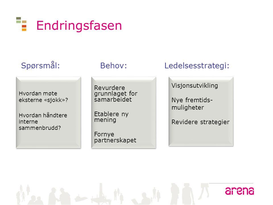 Endringsfasen Spørsmål: Behov: Ledelsesstrategi: Visjonsutvikling