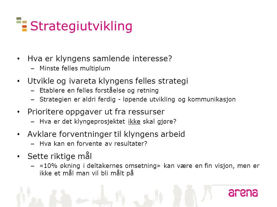 Strategiutvikling Hva er klyngens samlende interesse