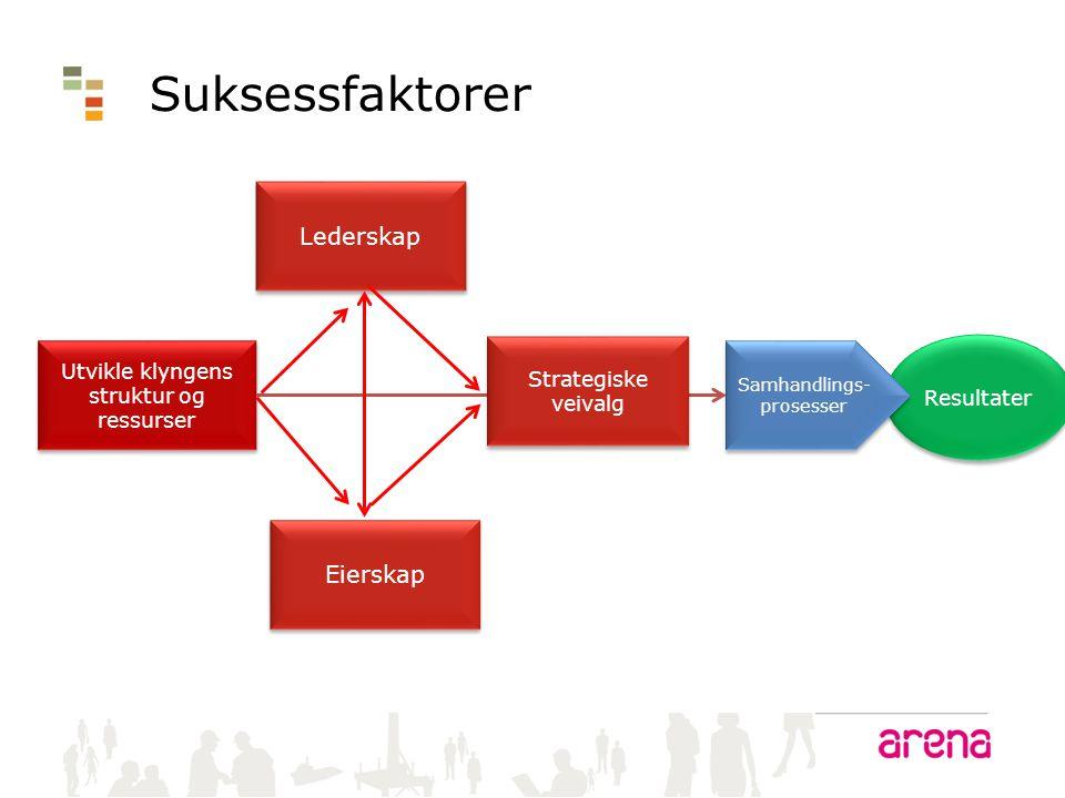 Utvikle klyngens struktur og ressurser