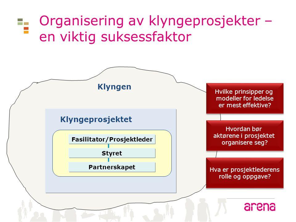 Organisering av klyngeprosjekter – en viktig suksessfaktor