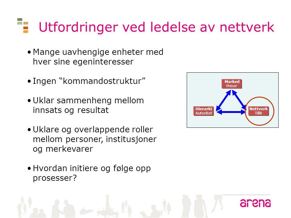 Utfordringer ved ledelse av nettverk