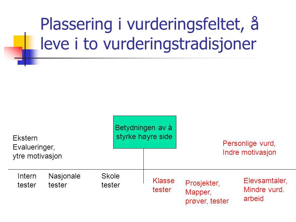 Plassering i vurderingsfeltet, å leve i to vurderingstradisjoner