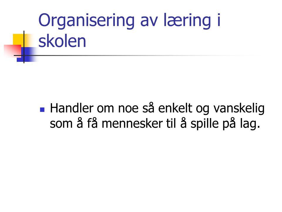 Organisering av læring i skolen