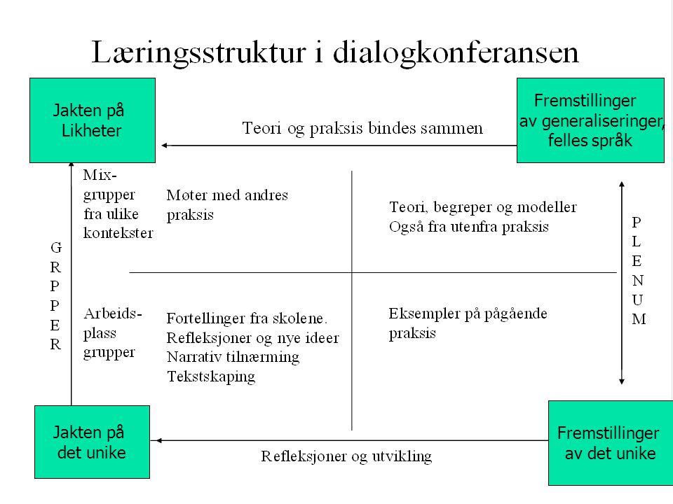 Jakten på Likheter. Fremstillinger. av generaliseringer, felles språk. Fremstillinger. av det unike.