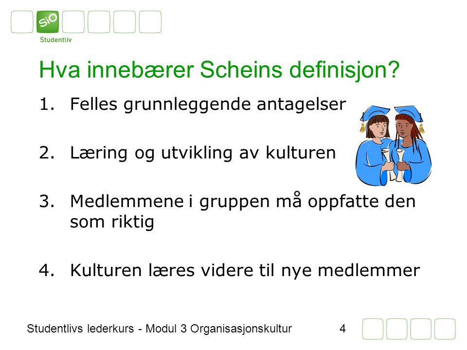 Hva innebærer Scheins definisjon
