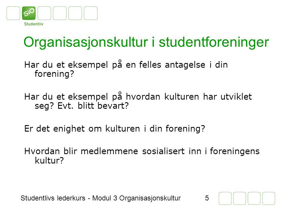 Organisasjonskultur i studentforeninger