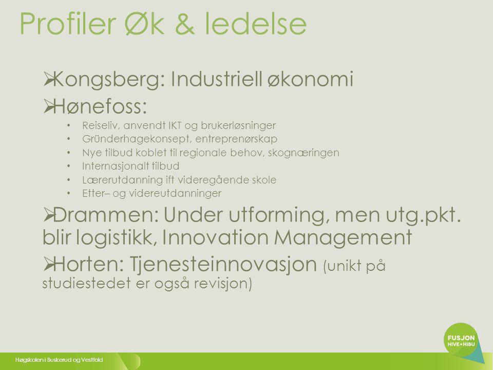 Profiler Øk & ledelse Kongsberg: Industriell økonomi Hønefoss: