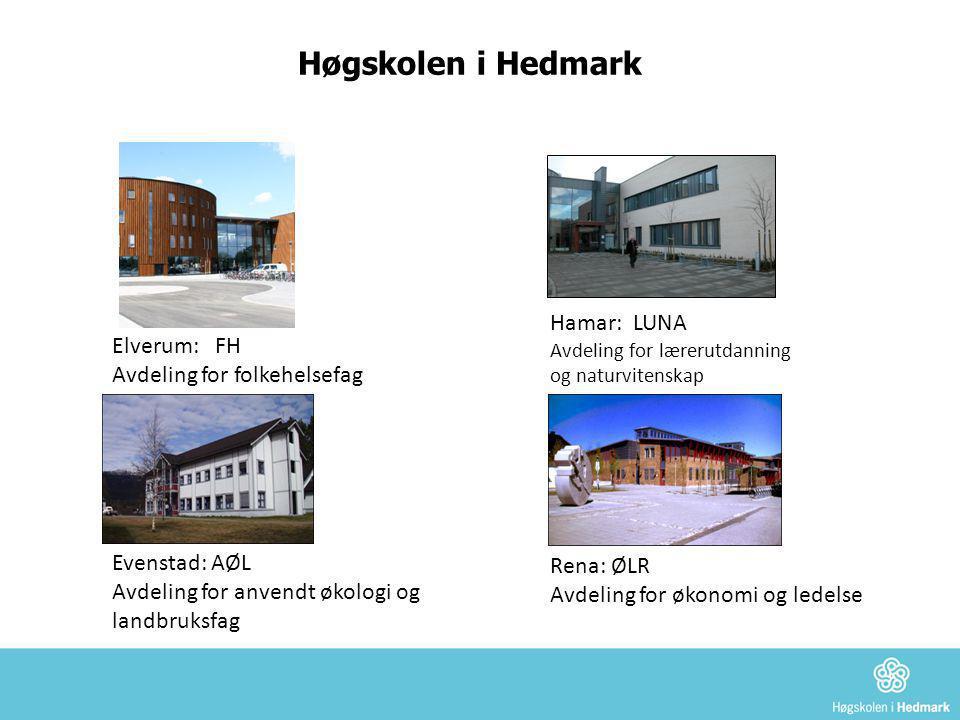 Høgskolen i Hedmark Hamar: LUNA Avdeling for lærerutdanning og naturvitenskap. Elverum: FH Avdeling for folkehelsefag.