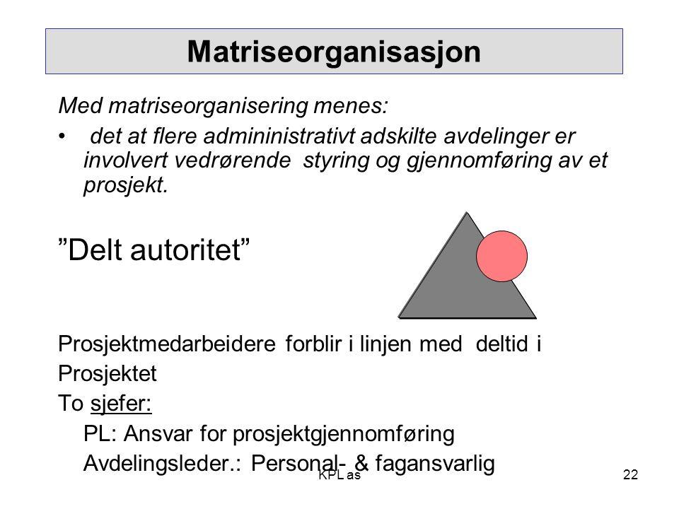 Matriseorganisasjon Delt autoritet Med matriseorganisering menes: