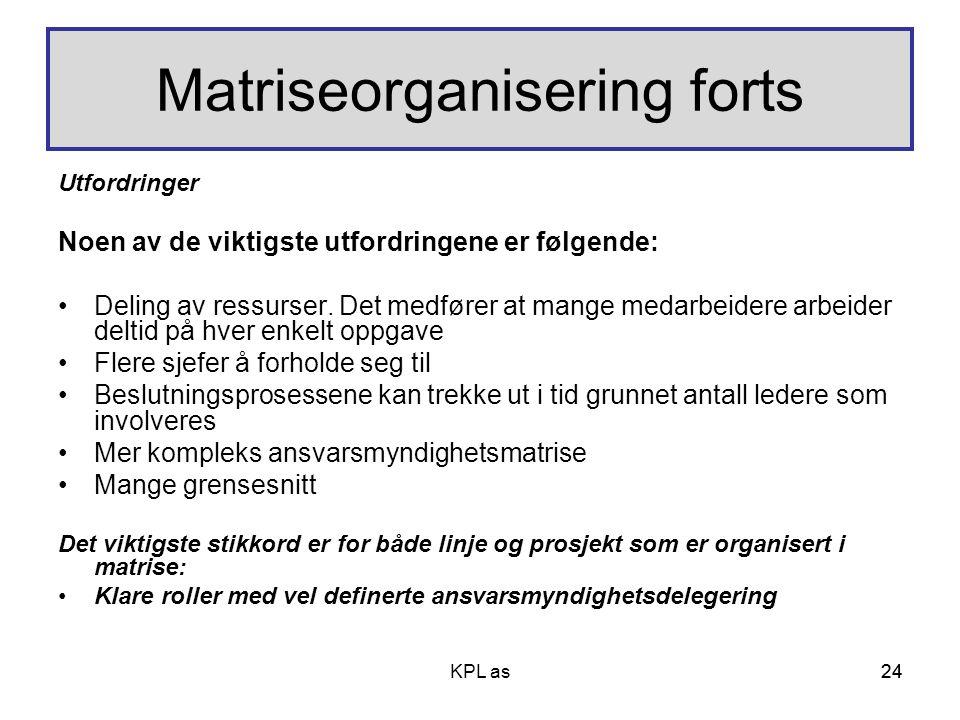 Matriseorganisering forts