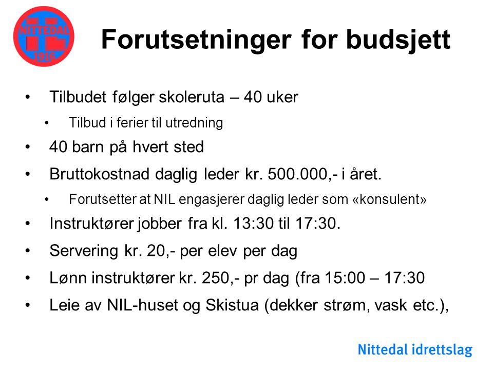 Forutsetninger for budsjett