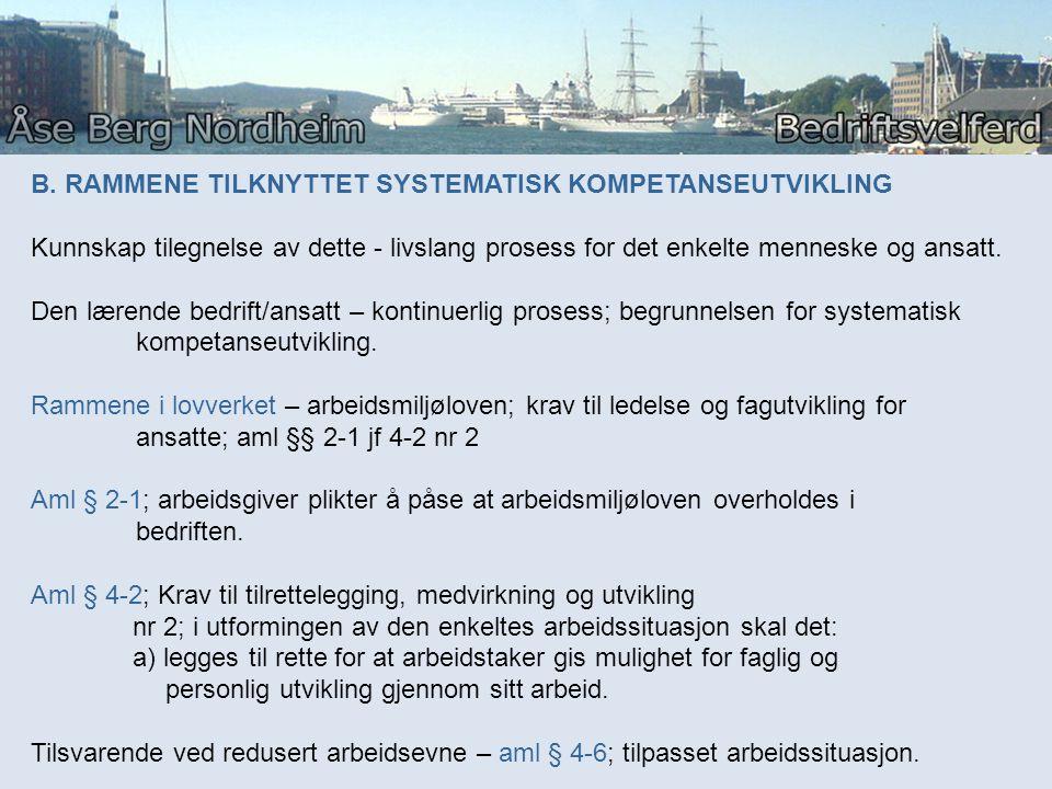 B. RAMMENE TILKNYTTET SYSTEMATISK KOMPETANSEUTVIKLING