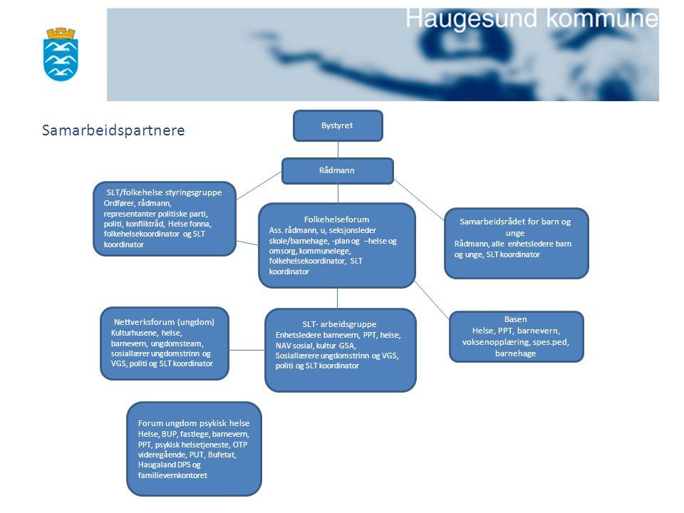 Samarbeidspartnere Bystyret Rådmann SLT/folkehelse styringsgruppe