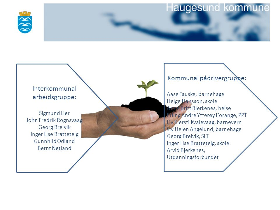 Interkommunal arbeidsgruppe: Kommunal pådrivergruppe:
