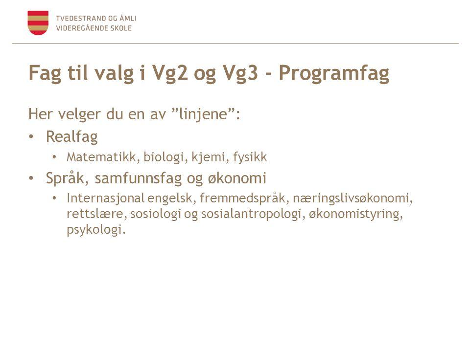 Fag til valg i Vg2 og Vg3 - Programfag