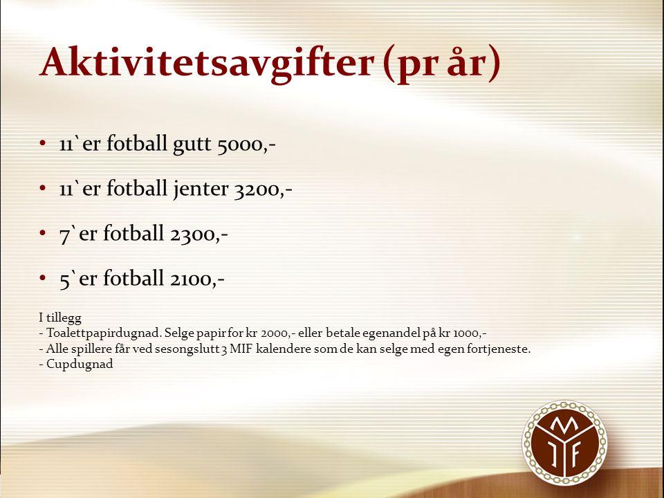 Aktivitetsavgifter (pr år)