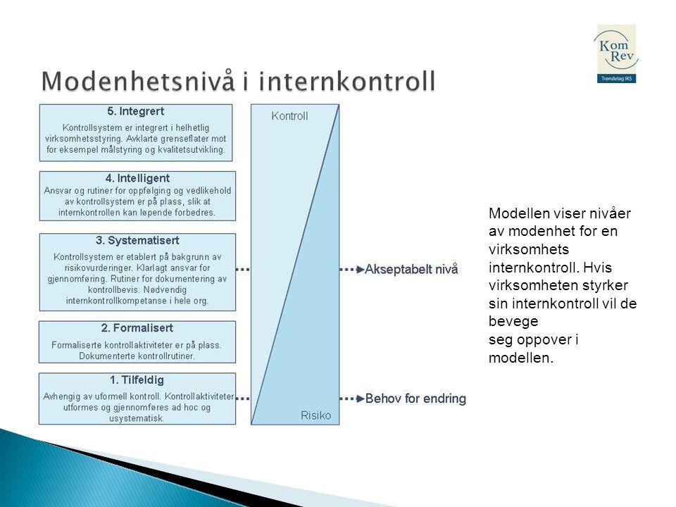 Modenhetsnivå i internkontroll