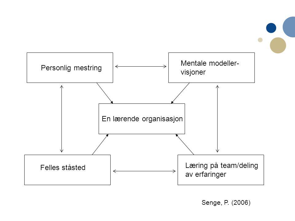 Mentale modeller- visjoner