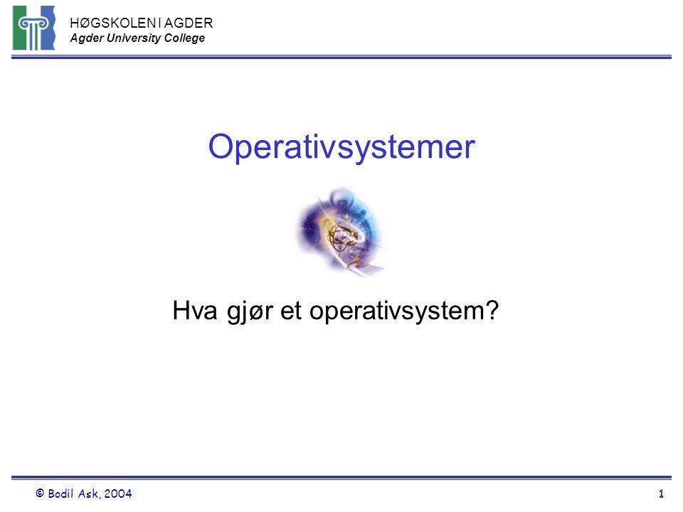Hva gjør et operativsystem